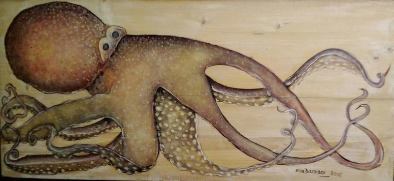 Animal marino, pulpo